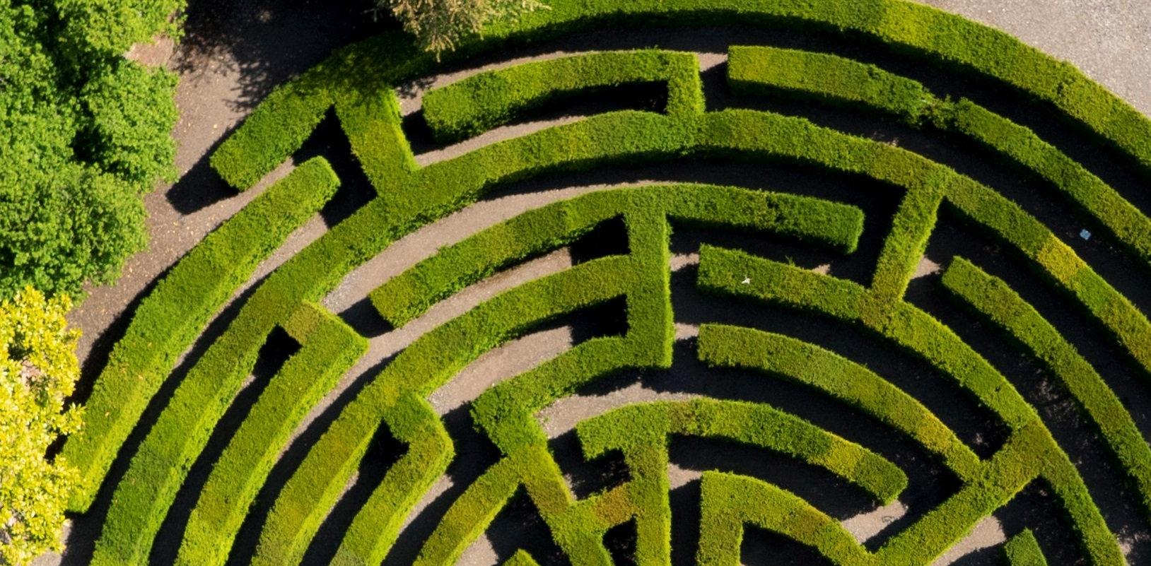 Maze_from_above